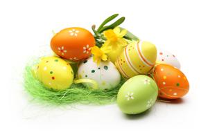 eggs-main-a9ec5429394d4e554ab557db02fdda97