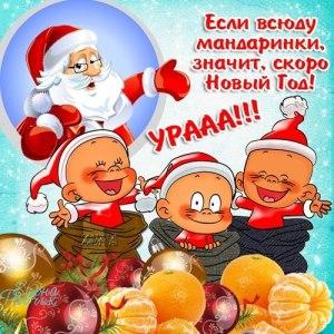 Поздравления с Новым годом 2015 Козы: смешные короткие смс