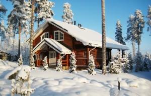 Новогодний отдых в Подмосковье недорого