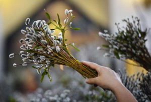 Вербное воскресенье: традиции и обычаи