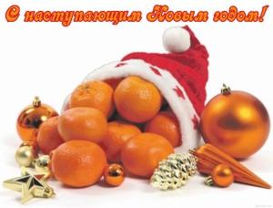 Новогодние поздравления с наступающим годом в прозе