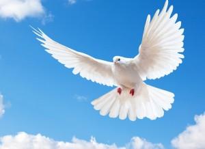 Благовещение Пресвятой Богородицы: приметы и суеверия