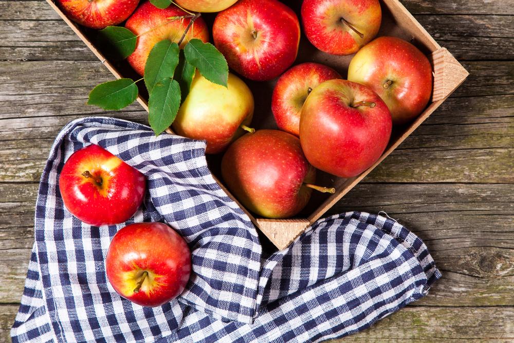 яблочный спас сценарий праздника для пожилых людей