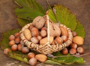 Ореховый Спас: традиции и обычаи