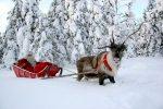 Миниатюра к статье Куда поехать на Новый год 2017 в России недорого